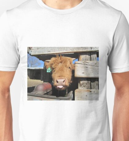 Anthony  29 March 2015 T-Shirt