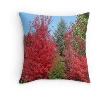 Trees of a different colour ! Throw Pillow
