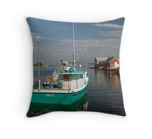 Evening In West Dover Throw Pillow