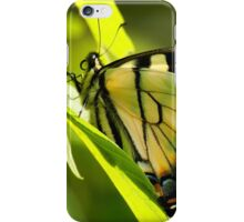 Eastern Tiger iPhone Case/Skin