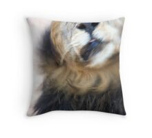 Lion Shaking Off Water Throw Pillow