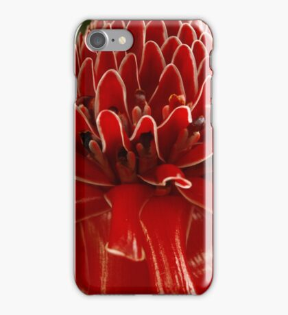 Torch Ginger, Costa Rica, Piedades, Costa Rica iPhone Case/Skin