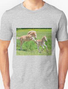 Haflinger foals romp about Unisex T-Shirt