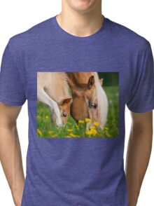 Common dinner, foal with mom Tri-blend T-Shirt