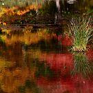 Harriman Lake by photoloi