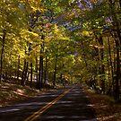 Harriman Road by photoloi