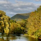 Autumn Evening Along Trout Run Creek by Gene Walls