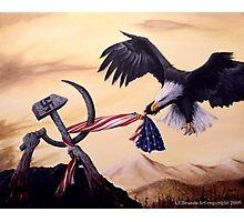 Freedom's Battle Photographic Print