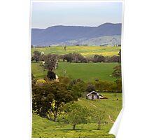 Daisy Farm Poster