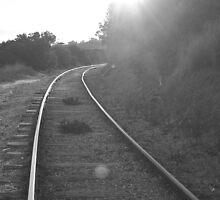 Penny on a Train Track by EmmyJade