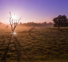Morning in luxembourg by SPICTURE