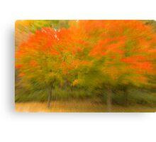 Autumn's Whimsy Canvas Print