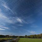 Into the Sky by Brendan Schoon