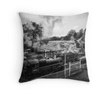 Sheds of power and cussing Throw Pillow