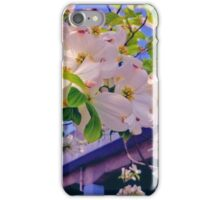Flowering tree with white flowers iPhone Case/Skin