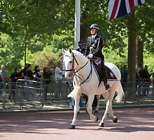 Police on horseback during the State Opening Of Parliament London by Keith Larby