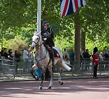 Police horse gallops up the mall at the State Opening Of Parliament London by Keith Larby