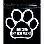 I Rescued My BEST Friend. by Amphitrite