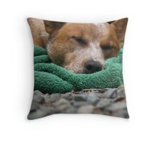 Let Sleeping Dogs Lay. Throw Pillow