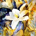 White Lily by Angela  Burman