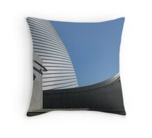 One Building, Many Lines Throw Pillow