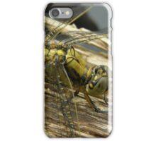 Yellow dragon iPhone Case/Skin