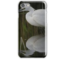 Stealth reflection iPhone Case/Skin