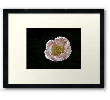 Emerging from the void Framed Print