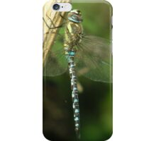 Dragons rest iPhone Case/Skin