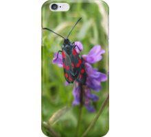 Six-Spot Burnet iPhone Case/Skin