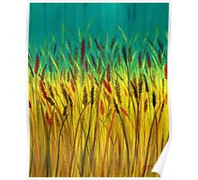 Fields of Wheat Poster