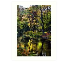 Autumnal River Devon Art Print