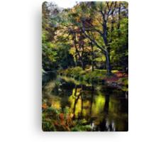 Autumnal River Devon Canvas Print