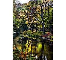 Autumnal River Devon Photographic Print