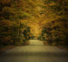 Autumn Drive ~ Experiment in Texture by Jigsawman