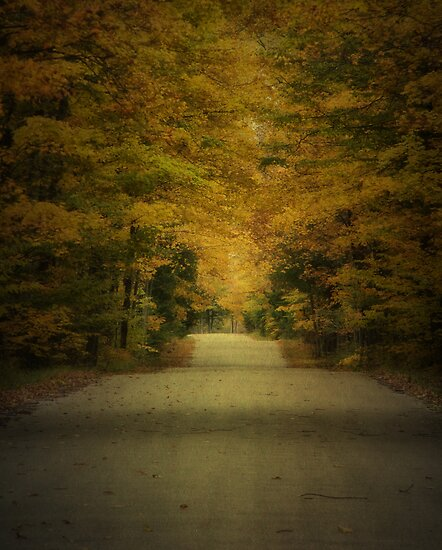Autumn Drive ~ Experiment in Texture by Jigsawman
