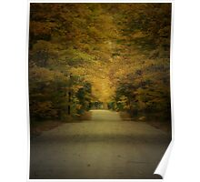 Autumn Drive ~ Experiment in Texture Poster