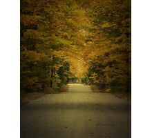 Autumn Drive ~ Experiment in Texture Photographic Print