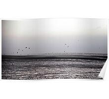 Wind surfing Poster