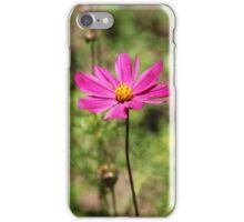 Pink wild flower iPhone Case/Skin