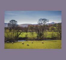 Welsh Landscape, Uk Kids Tee