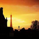 Dusk in Paris by STEPHANIE STENGEL | STELONATURE PHOTOGRAHY