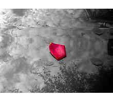 Hood Ornament Photographic Print