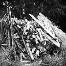 Spanish Wood cart by Kelvin Hughes