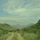 Paint Gap Road at Big Bend National Park by Susan Russell