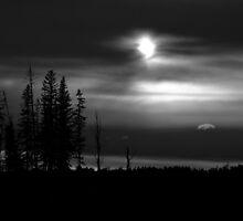 Moody Silence by Millisa B