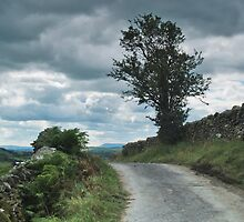 Norber to Austwick Road. by WatscapePhoto