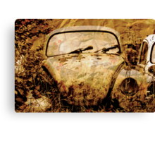 Death of a Beetle Canvas Print