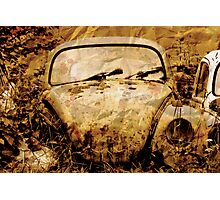 Death of a Beetle Photographic Print