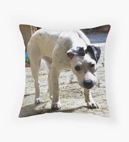 Montepulciano, Italy Throw Pillow
